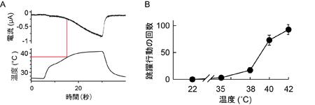 図1富永.jpg