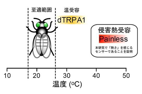 20081001_1.jpg