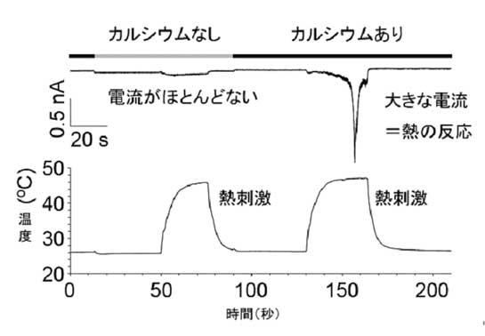20081001_2.jpg