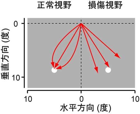 20081015_3.jpg