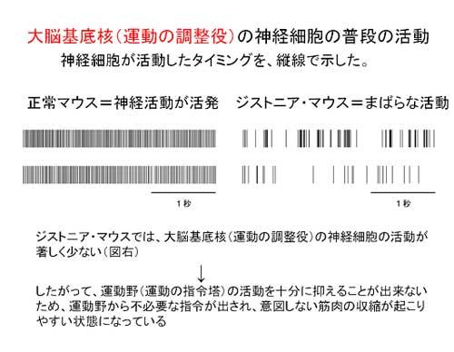 20081217_2.jpg