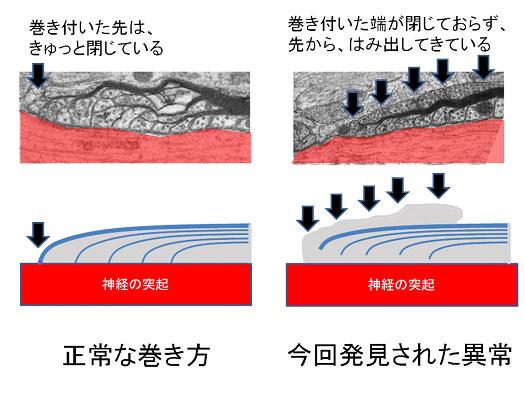 20090701_2.jpg