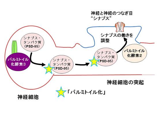 20090714_1-1.jpg