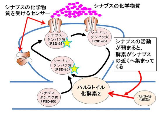 20090714_2.jpg
