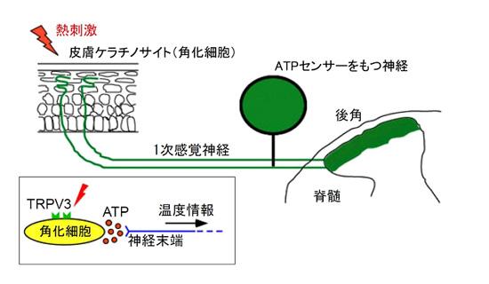 20091008_1.jpg
