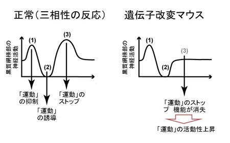 20130424nambu-3.jpg