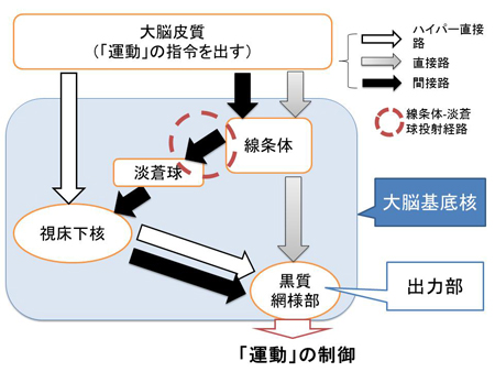 20130424nanbu-1.jpg