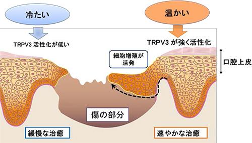 kyushu-5.jpg