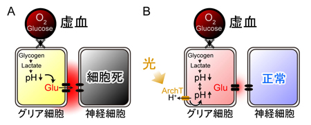 matsui-press20141.23-2.jpg