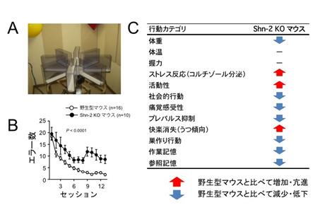 miyakawapress-1.jpg