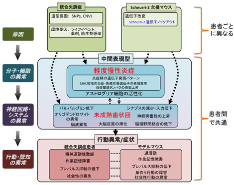 miyakawapress-7.jpg