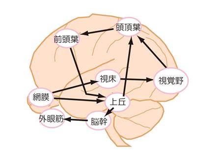 moushi-1-2.jpg
