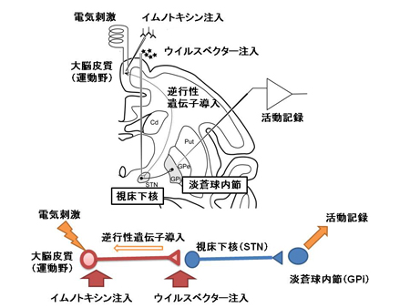 nanbu-2.jpg
