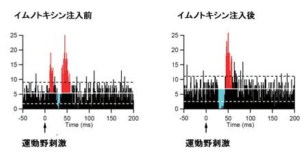 nanbu-3.jpg