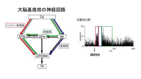 nanbu-4.jpg