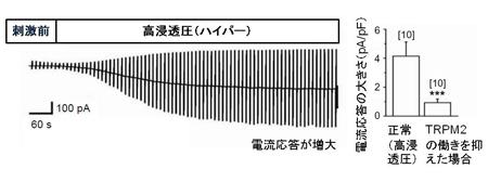 okada-1.jpg