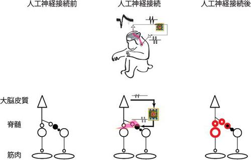 press-nishimura20131108-2.jpg