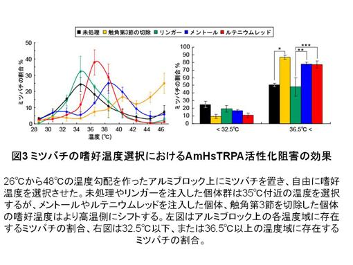 slide3_R.jpg