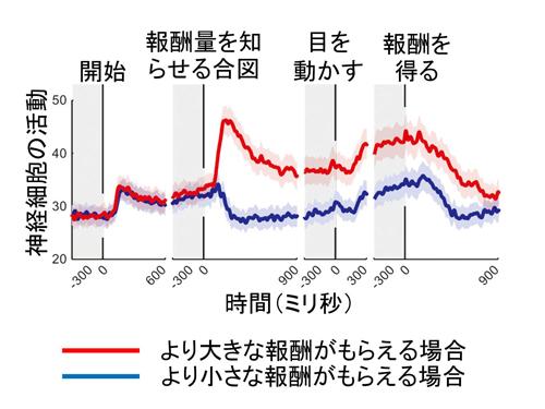 tachibana-2.jpg