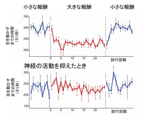 tachibana-3.jpg
