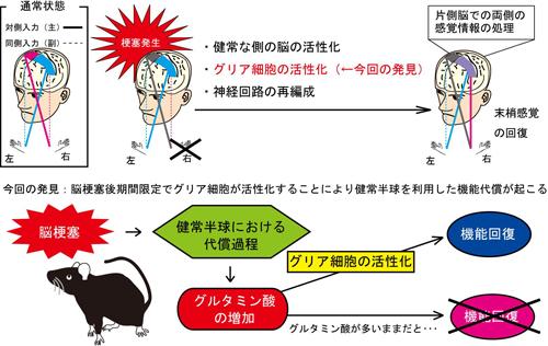 takatsuru20130313.jpg