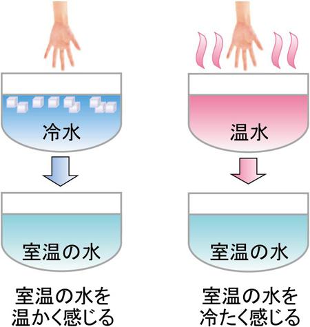 tominaga-press1.jpg