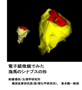 bm8_1.jpg