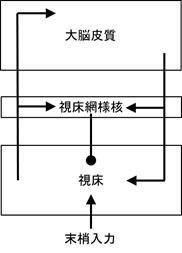 img_takada_n.jpg