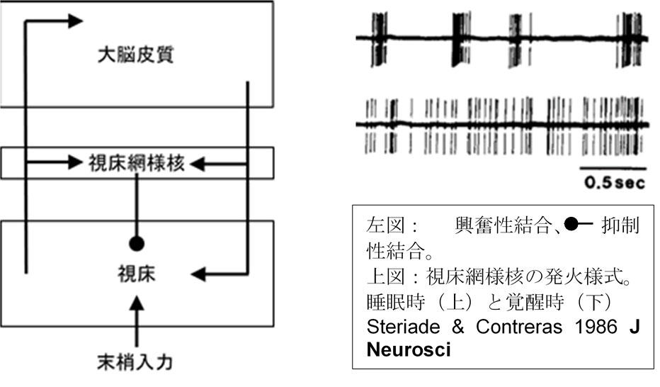 img_takata2018.jpg