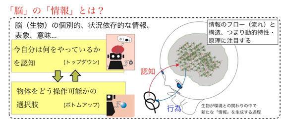 img_wagatsuma.jpg