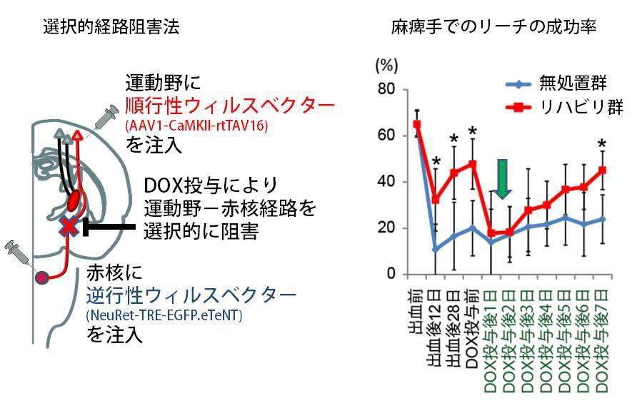 20160114isa-4.jpg
