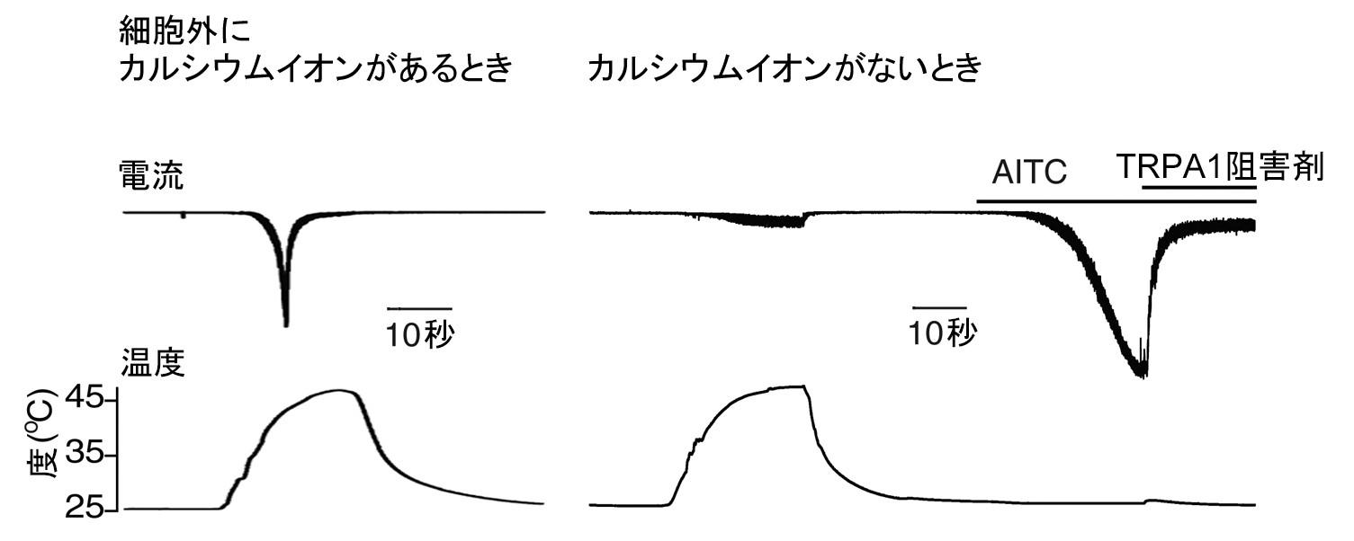20170307tominaga_1.jpg