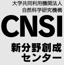 CNSI_logo.jpg