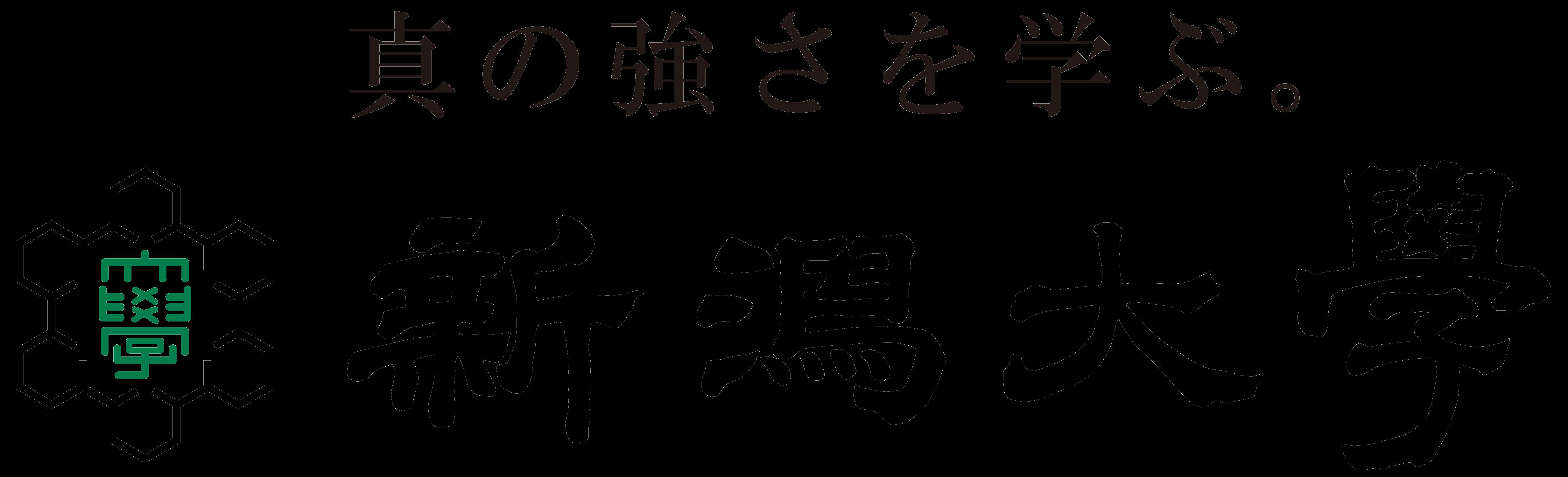 nigataUni2_logo.png