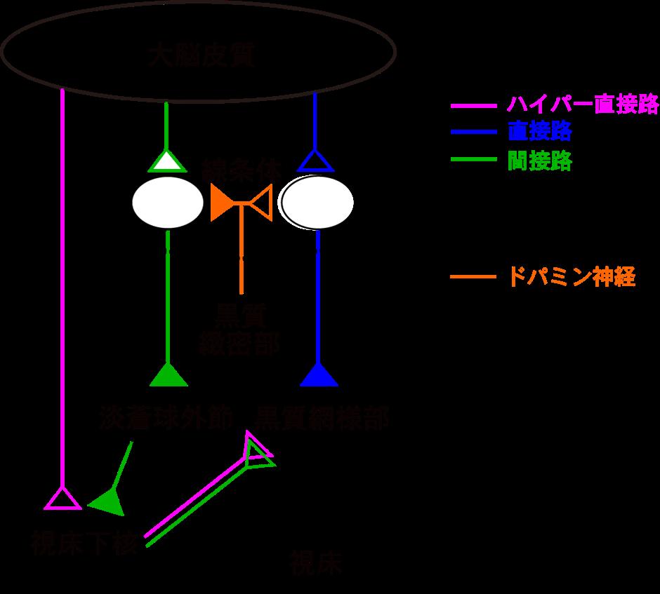 20210303nambu-1.png