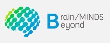 brainmaindsbeyond_logo.jpg