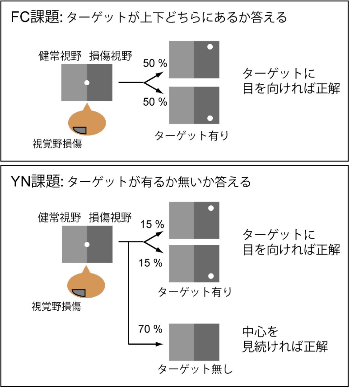 20150616press_yoshida2.jpg