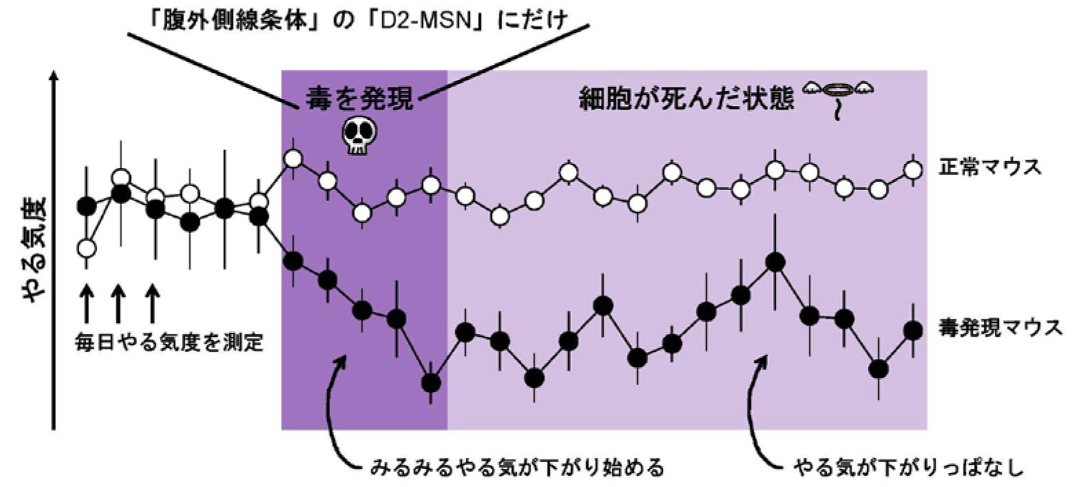 20170201pressSano_1.jpg