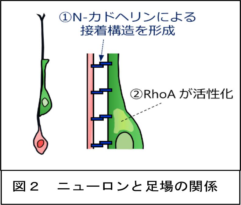 20171215sawamoto-2.jpg