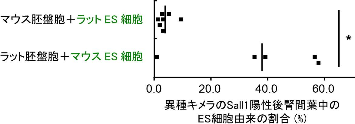 20190206hirabayashi-1-2.png