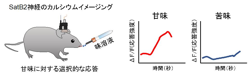 20190507nakajima-2.png