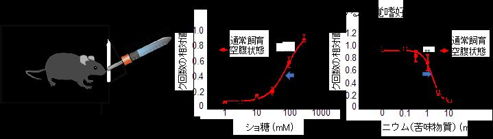 20191008nakajima-1.png