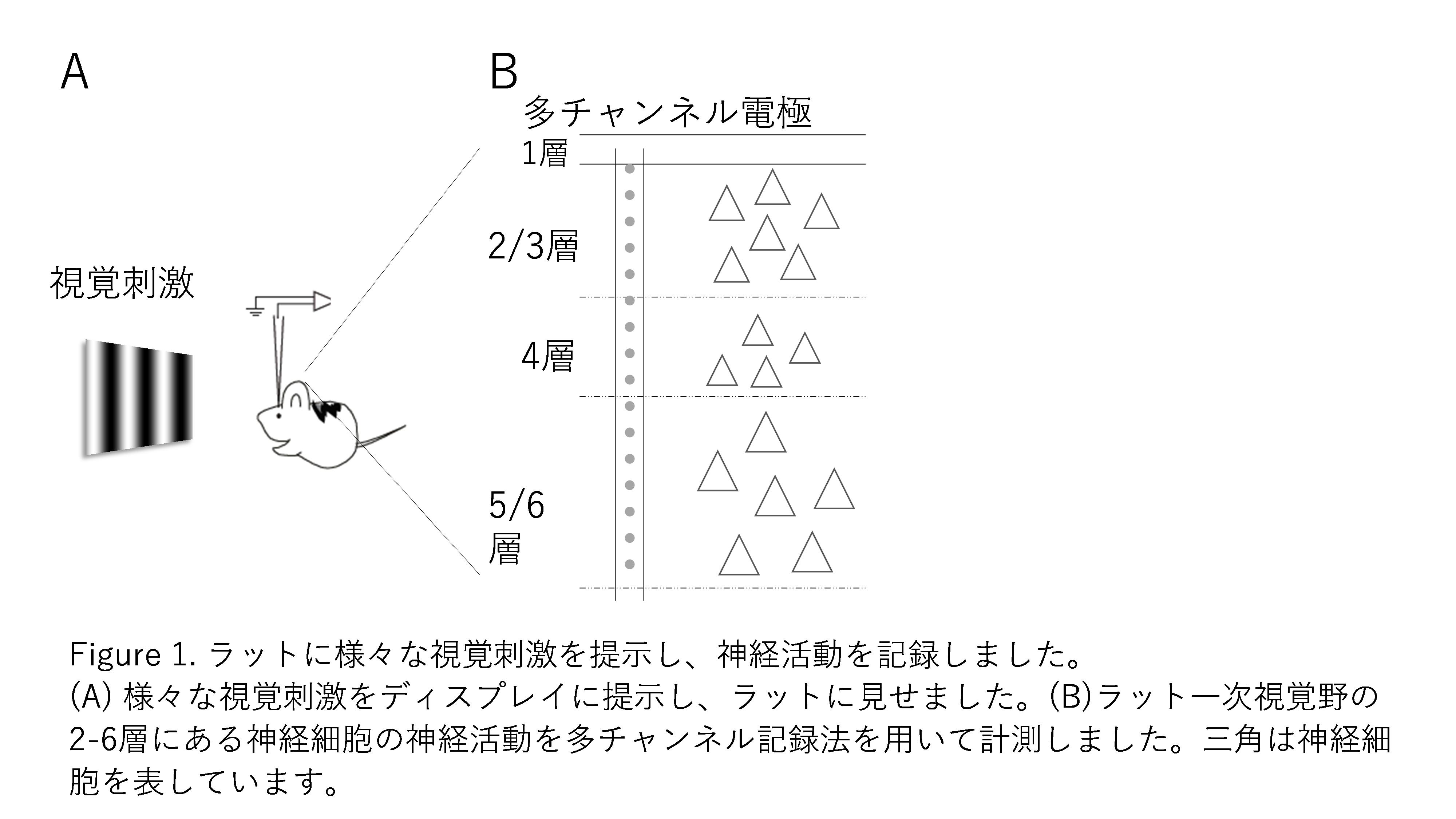 pressishikawa20180822-1.png