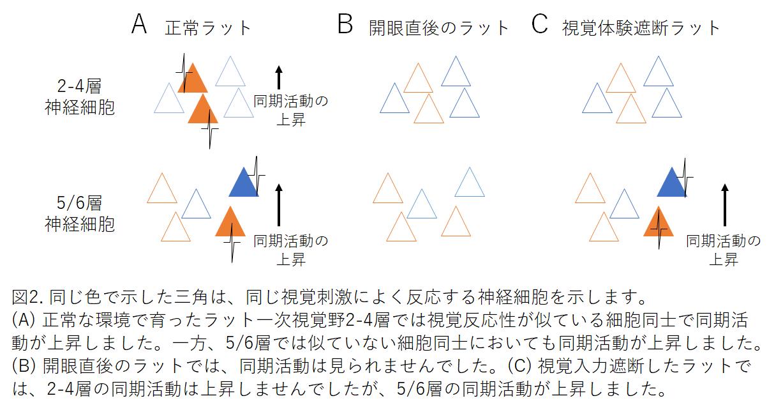 pressishikawa20180822-2.png