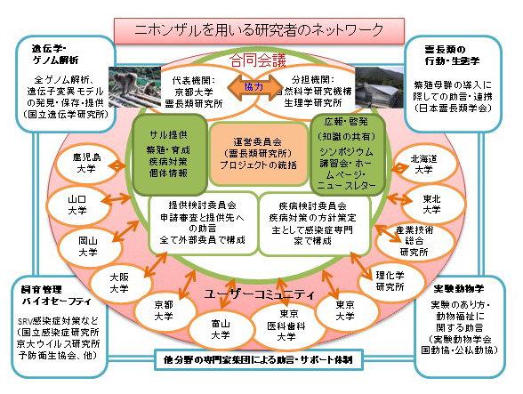 NBR2021_JPN.jpg